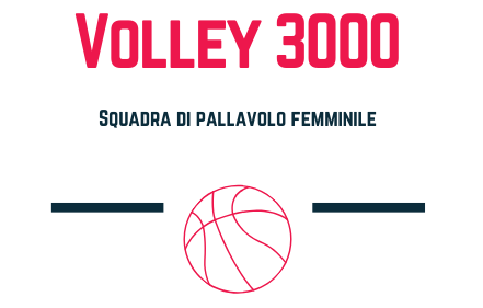 logo volley 3000